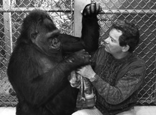 William Shatner and Koko